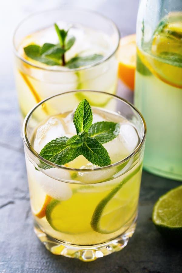 Tonicum met citroen, kalk en pepermunt in een transparant glas met een fles stock afbeelding