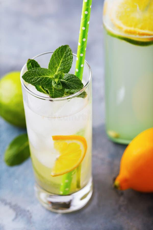 Tonicum met citroen, kalk en pepermunt in een transparant glas op de lijst stock afbeelding