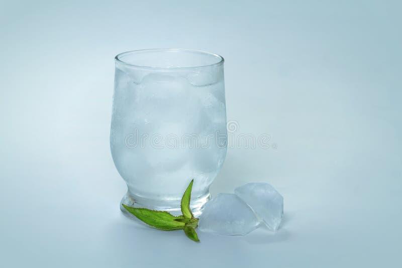 Tonicum met ijs royalty-vrije stock fotografie