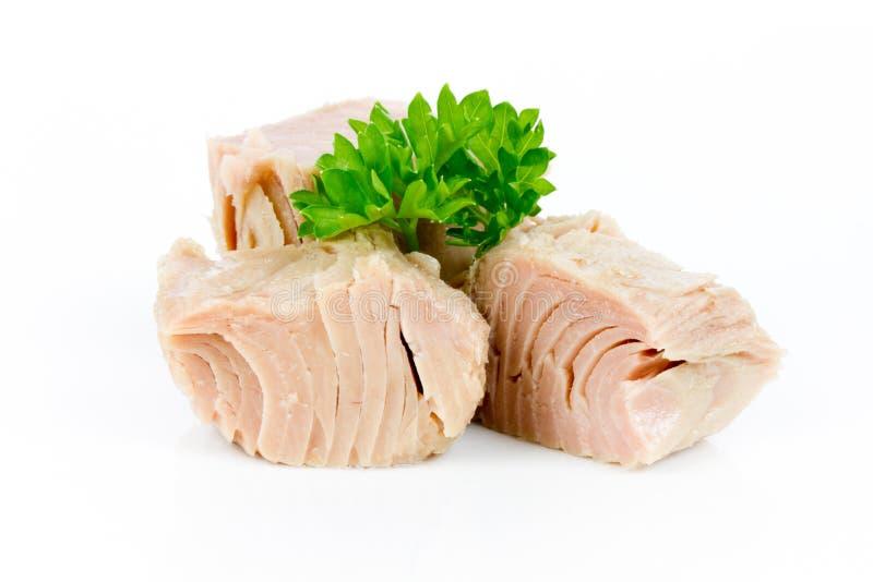 tonijn stock afbeeldingen