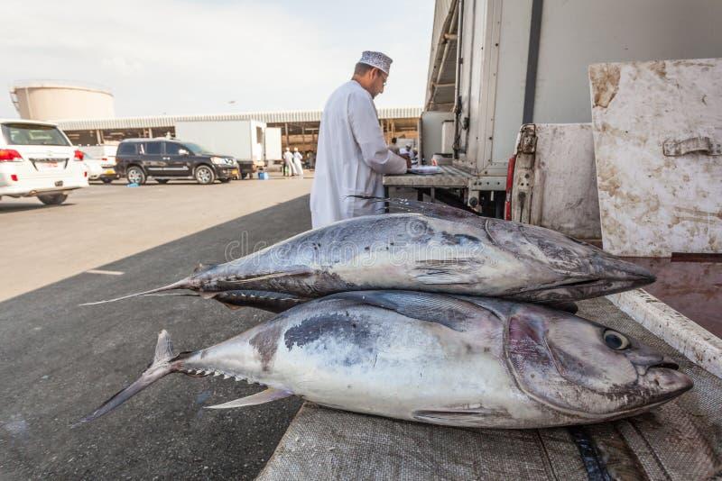Tonijn bij de vissenmarkt in Muttrah, Oman stock afbeeldingen