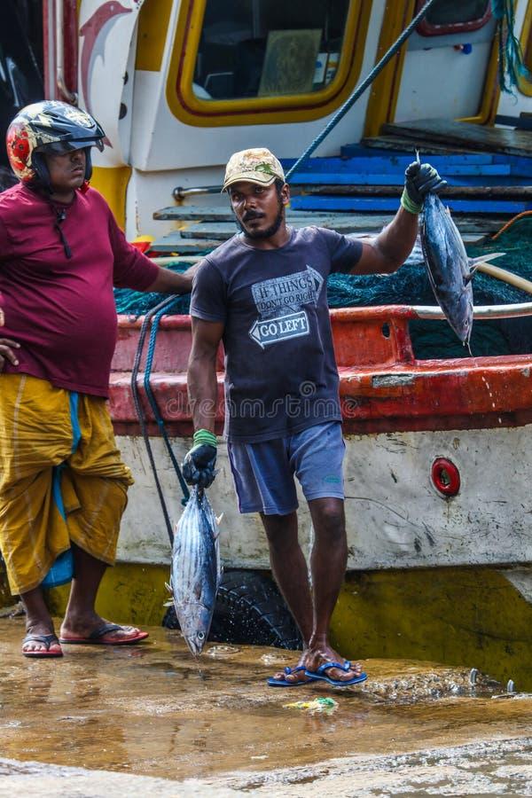 Tonijnvissen die van boten in Mirissa-Haven, Sri Lanka brengen te landen royalty-vrije stock foto