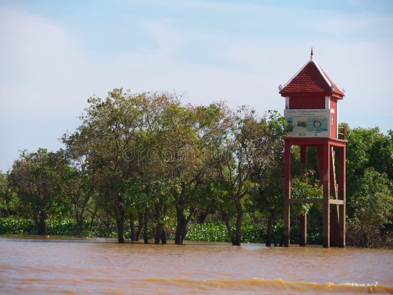 Tonle树汁河在柬埔寨 库存照片
