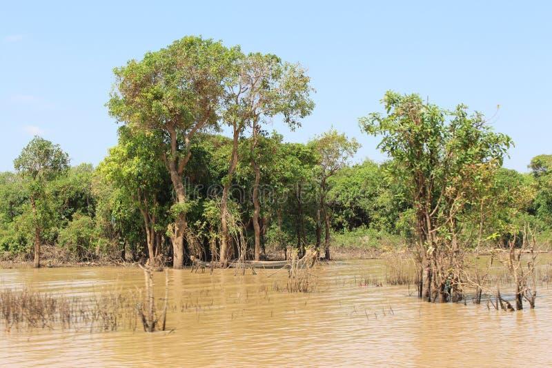 Tonle Sap湖的柬埔寨,暹粒市浮动村庄 库存照片