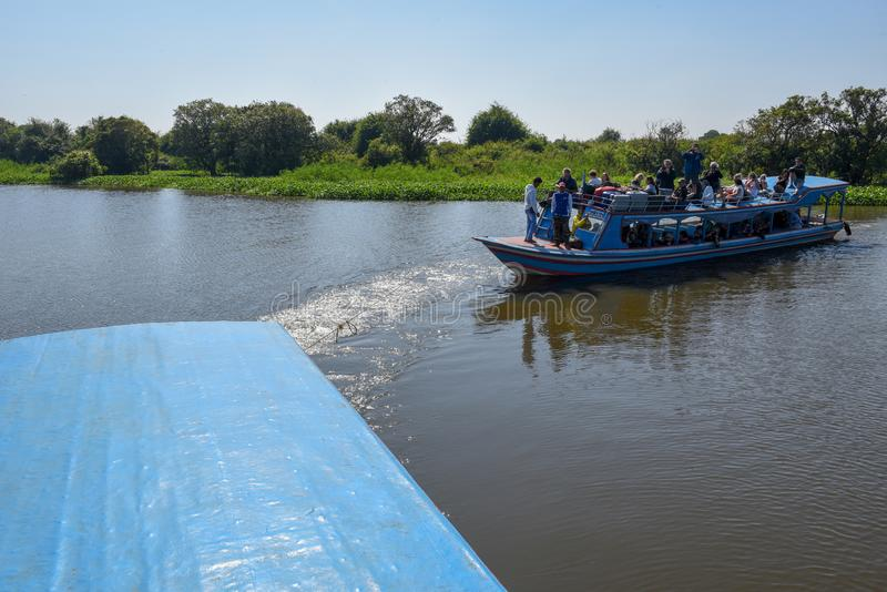 Boat navigating a tributary river to the Tonle Sap lake stock photo