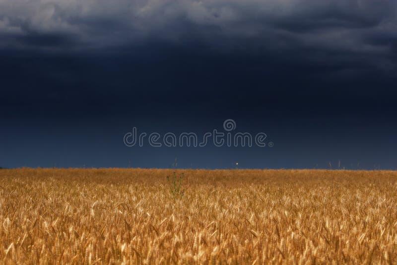 Tonnez le ciel au-dessus de la zone photographie stock libre de droits