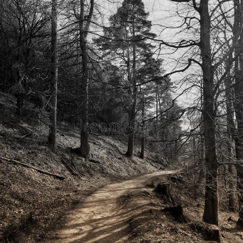 Tono del percorso 2 di Catbells fotografia stock libera da diritti