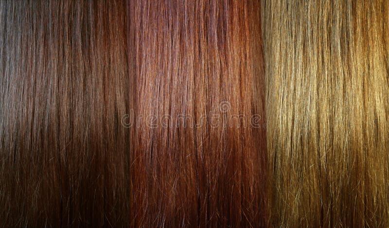 Tons do cabelo fotos de stock royalty free
