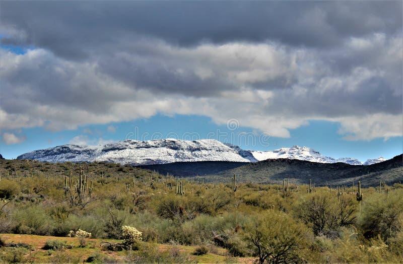 Tonto国家森林积雪的山脉在亚利桑那,美国 库存照片