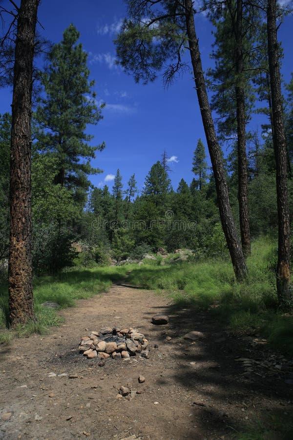 Tonto Creek, Payson Arizona royalty free stock image