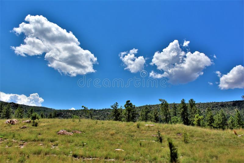 Tonto las państwowy, Arizona U S Departament Rolnictwa, Stany Zjednoczone fotografia stock