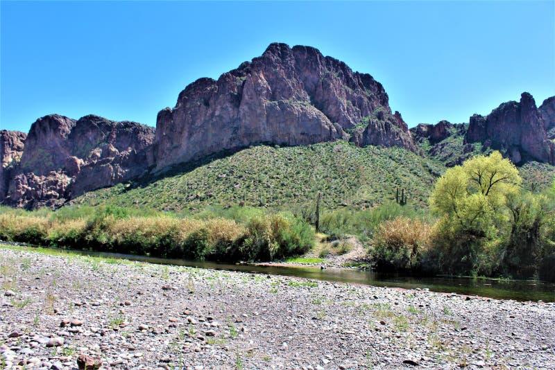 Tonto las państwowy, Solankowy Rzeczny Rekreacyjny teren, Stany Zjednoczone departament rolnictwa służby leśne, Arizona, Stany Zj zdjęcia royalty free