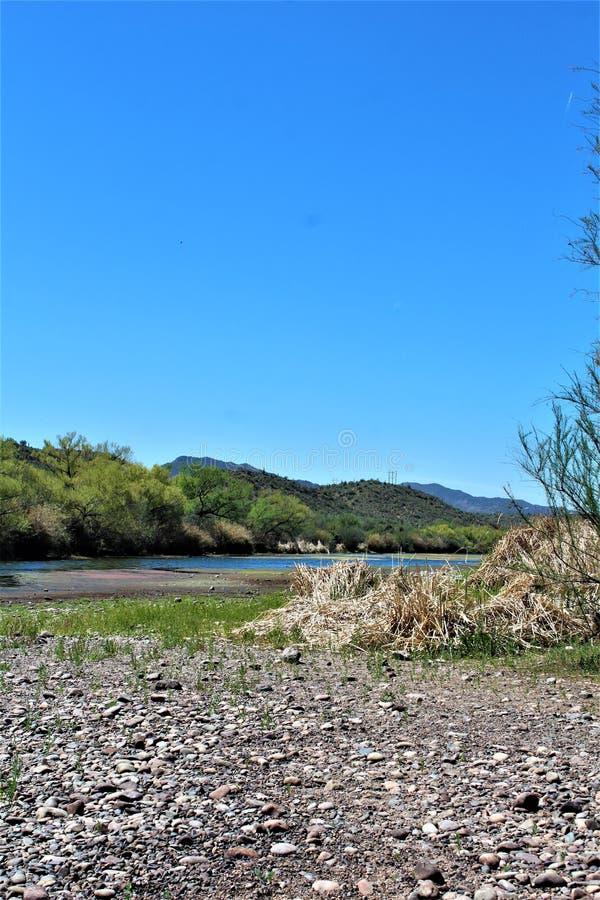 Tonto las państwowy, Solankowy Rzeczny Rekreacyjny teren, Stany Zjednoczone departament rolnictwa służby leśne, Arizona, Stany Zj fotografia royalty free