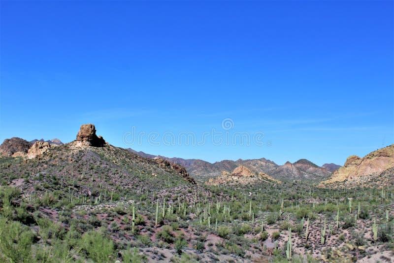 Tonto lasu państwowego sceniczny widok od mes, Arizona jar Jeziorny Arizona, Stany Zjednoczone obrazy stock
