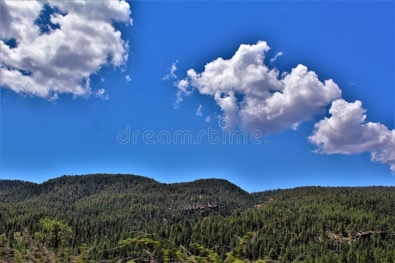 Tonto National Forest, Arizona U.S. Department of Agriculture, United States. Scenic landscape, vegetation and mountain range view of the Tonto National Forest royalty free stock photography