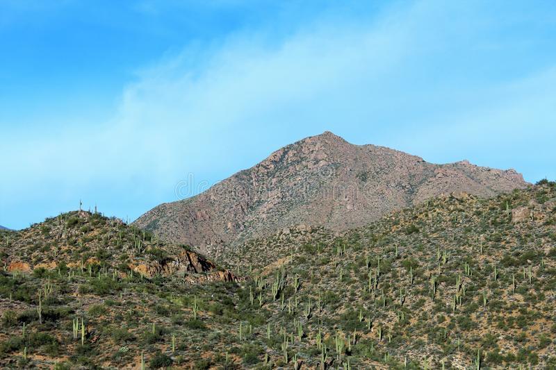 Tonto National Forest, Arizona U.S. Department of Agriculture, United States. Scenic landscape, vegetation and mountain range view of the Tonto National Forest royalty free stock photo