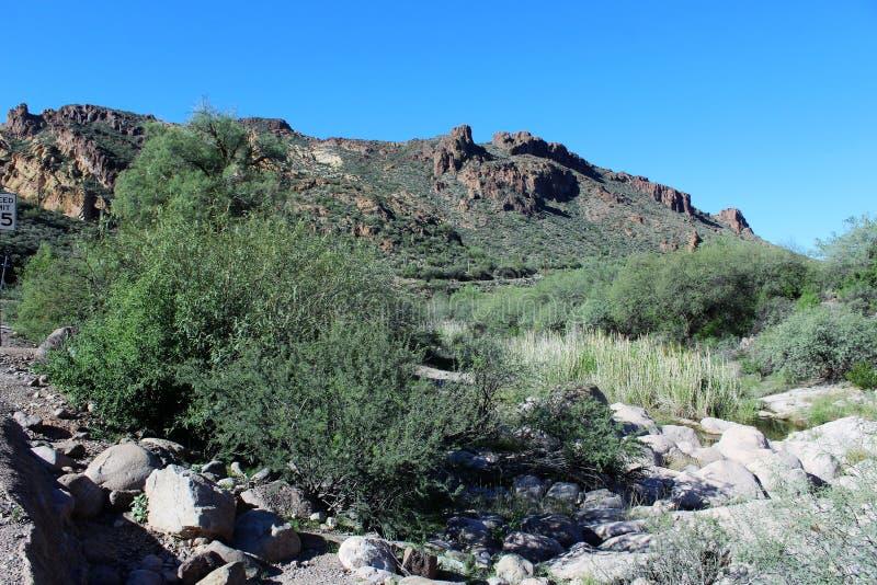 Tonto National Forest scenic view from Mesa, Arizona to Canyon Lake Arizona, United States. Scenic landscape and vegetation view from Mesa, Arizona to Canyon stock images
