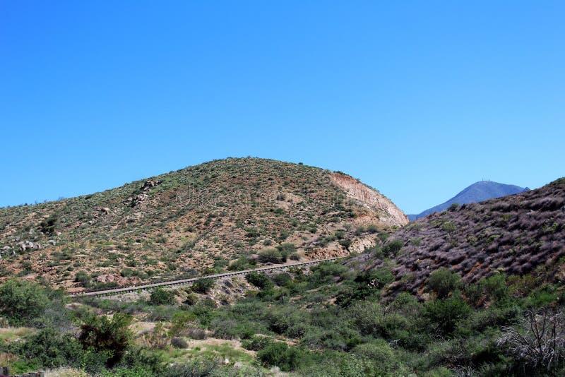 Tonto nationalskog, av huvudväg 87, Arizona U S Jordbruksavdelningen Förenta staterna arkivfoto