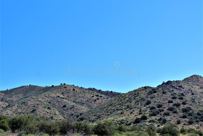 Tonto nationalskog, av huvudväg 87, Arizona U S Jordbruksavdelningen Förenta staterna royaltyfri bild