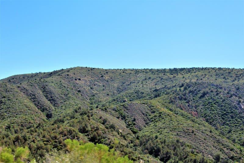 Tonto nationalskog, av huvudväg 87, Arizona U S Jordbruksavdelningen Förenta staterna royaltyfria foton