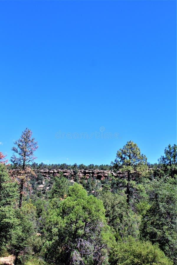 Tonto nationalskog, av huvudväg 87, Arizona U S Jordbruksavdelningen Förenta staterna royaltyfri foto