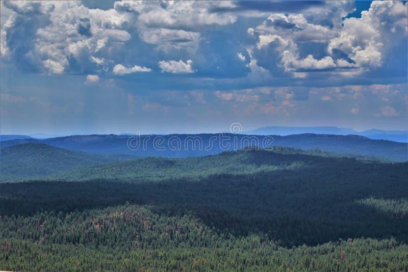 Tonto-staatlicher Wald, Arizona U S Landwirtschaftsministerium, Vereinigte Staaten stockbilder