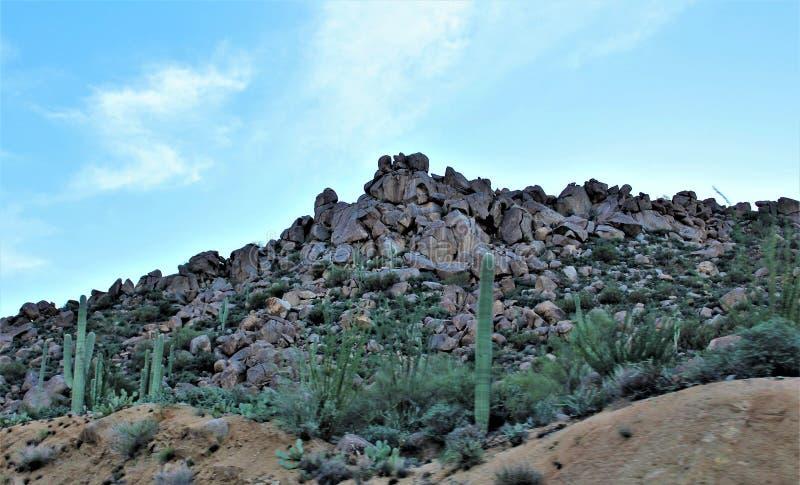 Tonto-staatlicher Wald, Arizona U S Landwirtschaftsministerium, Vereinigte Staaten lizenzfreie stockbilder