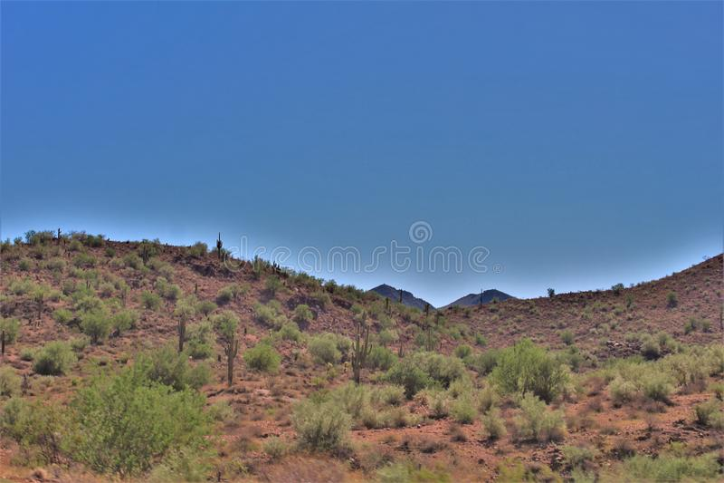 Tonto-staatlicher Wald, weg von Landstraße 87, Arizona U S Landwirtschaftsministerium, Vereinigte Staaten stockbilder