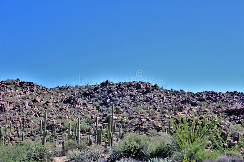 Tonto-staatlicher Wald, weg von Landstraße 87, Arizona U S Landwirtschaftsministerium, Vereinigte Staaten stockbild