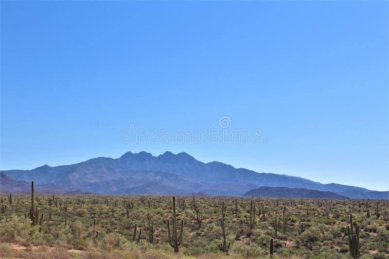 Tonto-staatlicher Wald, weg von Landstraße 87, Arizona U S Landwirtschaftsministerium, Vereinigte Staaten stockfotos