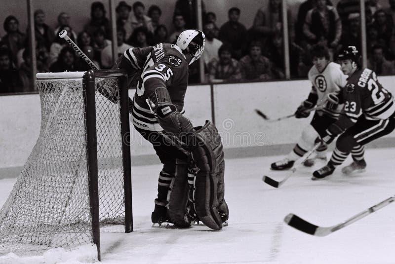 Download Tony Esposito Chicago Blackhawks Goalie Editorial Photography - Image: 27968317