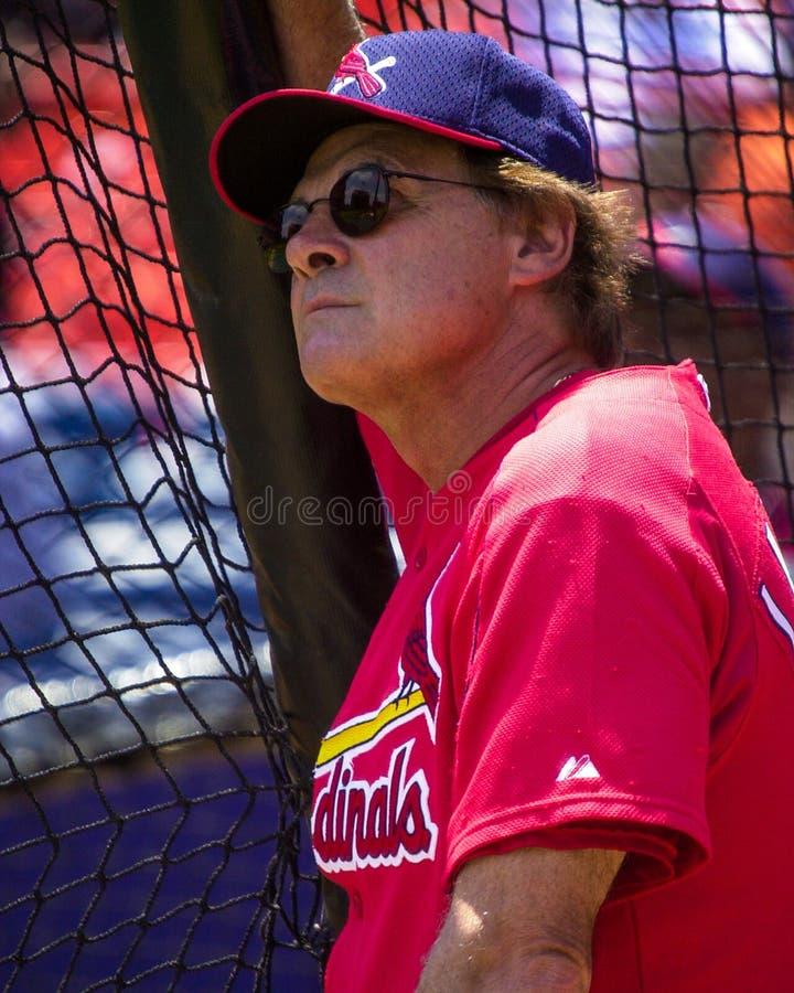 Tony LaRussa, St. Louis Cardinals stock image