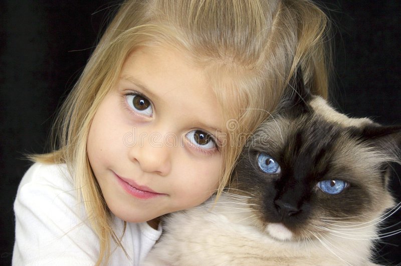 Download Too Cute Girl and Kitty stock image. Image of kitty, kids - 913901