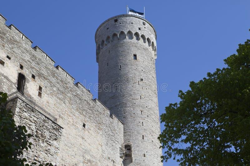Toompea Castle on Toompea hill Tall Hermann tower. Tallinn, Estonia stock photos