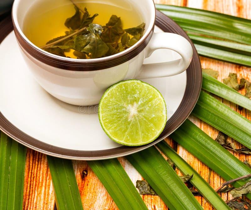 Toont de kalk Groene Thee Vruchten Drank en Verfrissing stock afbeelding