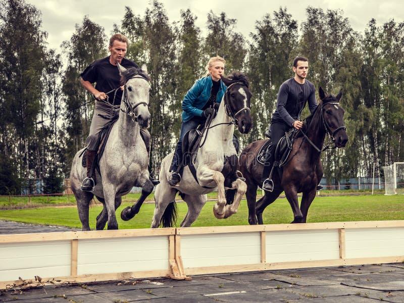 23 08 2017 toont het Gebied van Smolensk het springen bij het festival Drie ruiters die op horseback synchroon over een hindernis royalty-vrije stock afbeeldingen