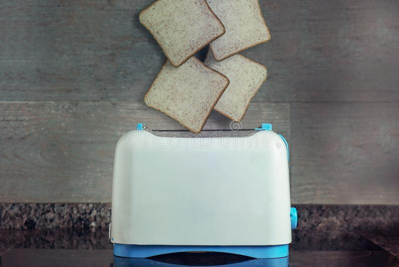 Toost vier die de broodrooster ingaan stock afbeelding