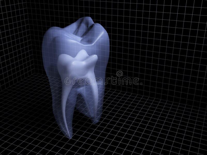 Download Tooth stock illustration. Illustration of wisdom, hygiene - 16931788