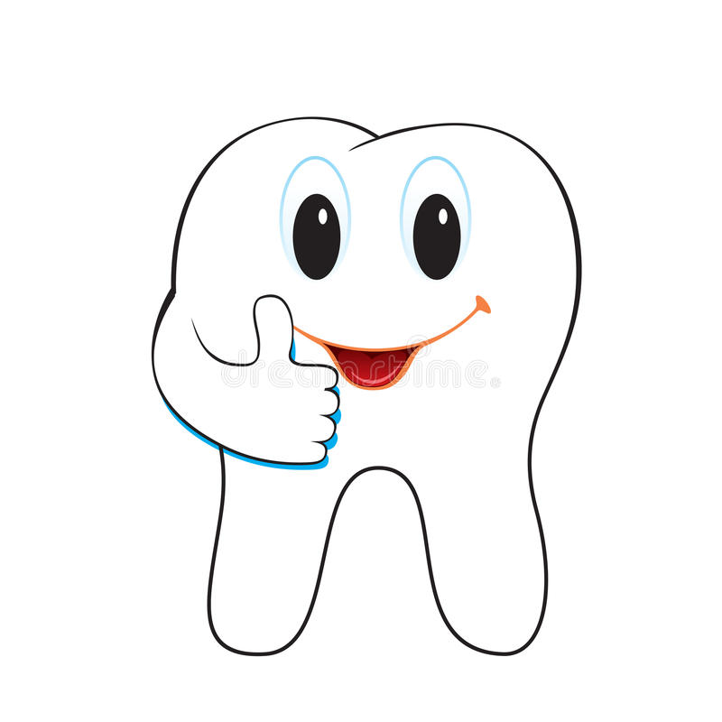 Download Tooth stock vector. Illustration of vector, root, smile - 25857747