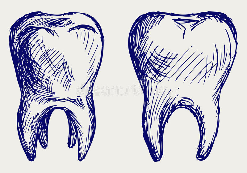 Download Tooth stock vector. Image of ancient, mouth, clean, isolated - 26975216