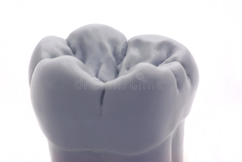 Download Tooth stock image. Image of corona, caries, breath, grinder - 8166091