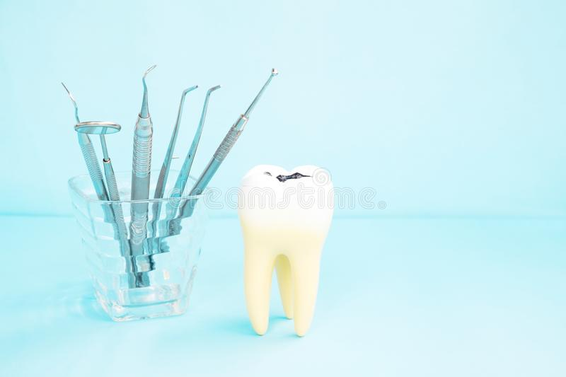 Dentist Tools And Prosthodontic Model. Stock Photo - Image of care ...