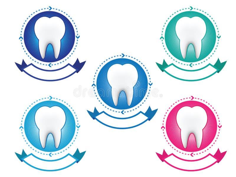 Tooth banner set vector illustration