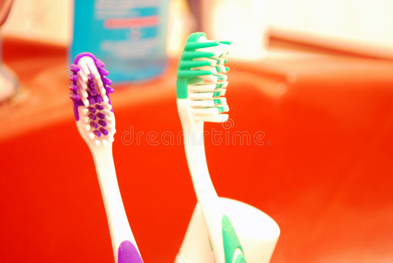 Download Tooth Brushes stock photo. Image of white, toothbrush - 8492312