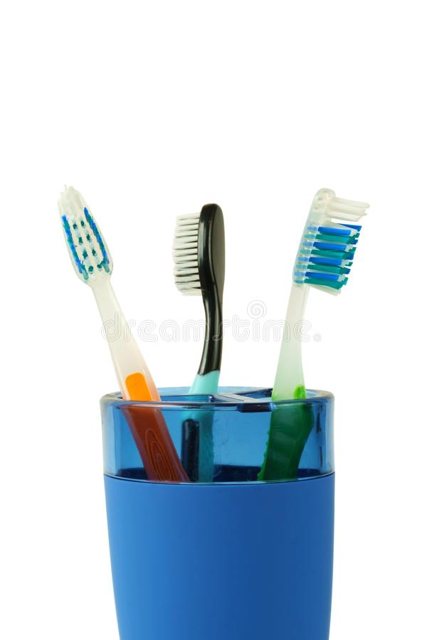 Tooth brushes in a blue plastic cup royalty free stock image