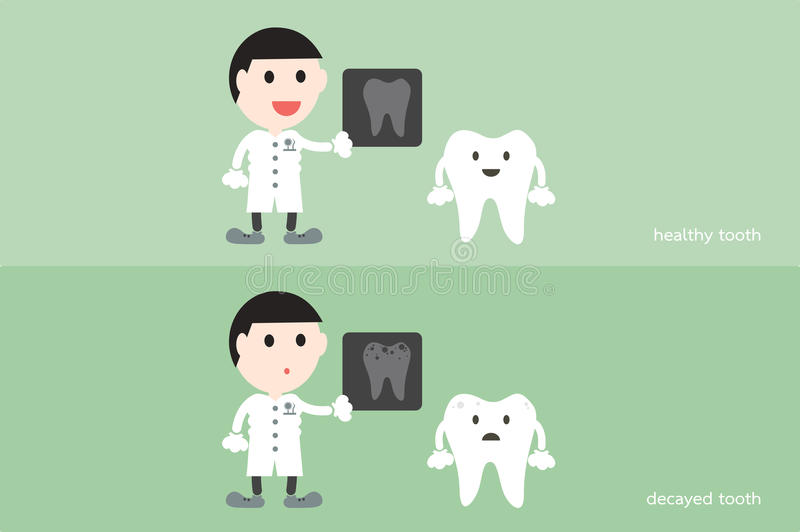 Tooth cartoon vector, male dentist hold dental x-ray film. With healthy and unhealthy teeth stock illustration
