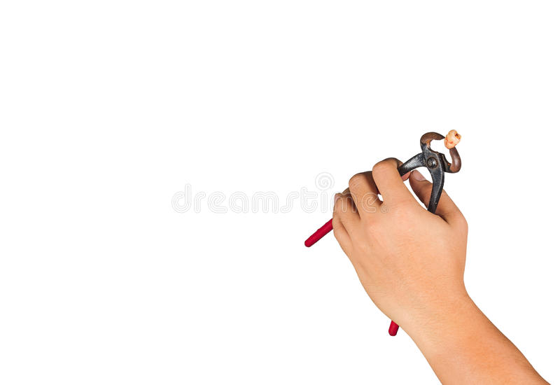 Tooth extraction with tools are not appropriate. On the white background royalty free stock image