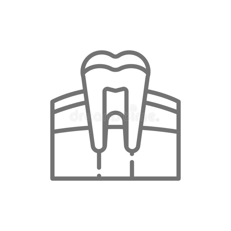 Tooth, gum, dentist, human organ line icon. royalty free illustration