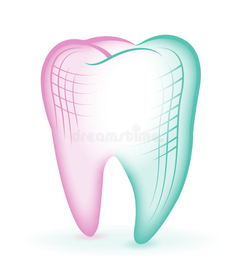 Tooth and gum, hand drawing. Dentistry, dental cleaning, oral hygiene stock illustration