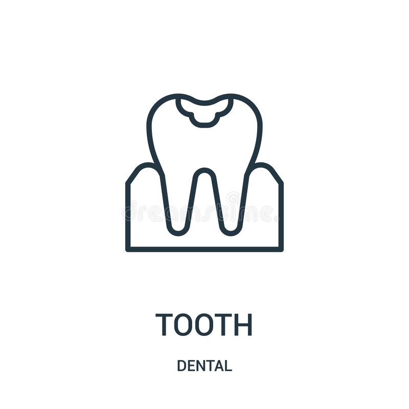 Tooth icon vector from dental collection. Thin line tooth outline icon vector illustration. Linear symbol. For use on web and mobile apps, logo, print media vector illustration